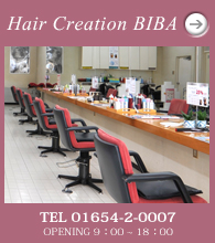 Hair Creation BIBA