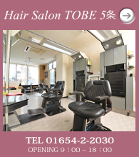 Hair Salon TOBE 5条